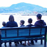 Nanny Wanted - Summer Help for my 3 boys ages 9-13