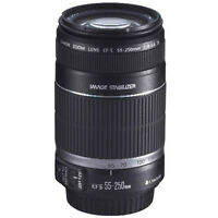 Canon 55- 250 mm IS Lens