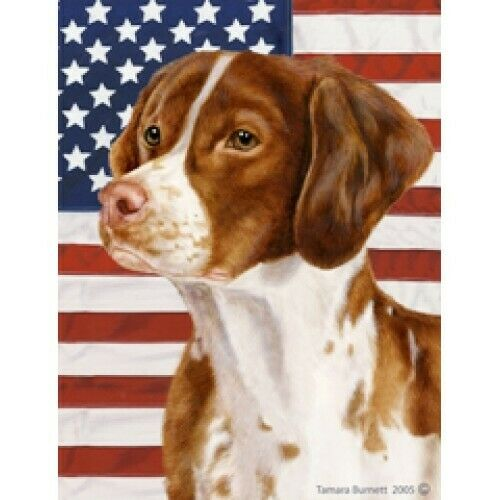 Patriotic (D2) House Flag - Brittany 32071