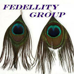 Fedellity Group