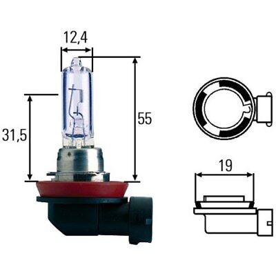 HELLA Glühlampe, Hauptscheinwerfer 8GH 008 357-181