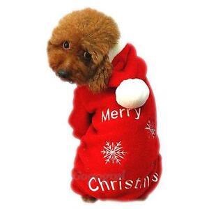 dog christmas outfit
