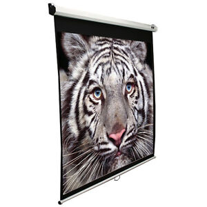 "BARELY USED - 99"" Projector Screen @ LESS than 1/3 of the price!"