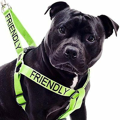 Dog Strap Harness Color Coded Green FRIENDLY ...