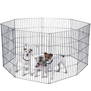 WANTED dog pen