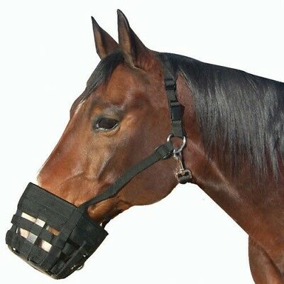 Best Friend Deluxe Grazing Muzzle with Breakaway Halter and Spare Buckle Best Friend Grazing Muzzle