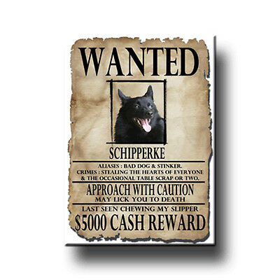 SCHIPPERKE Wanted Poster FRIDGE MAGNET New DOG Funny