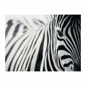 Large Zebra Print- Ikea, wall art ready to hang