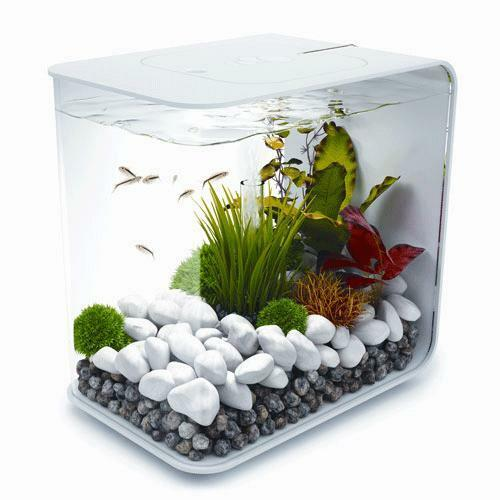Acrylic fish tank ebay for Fish tanks for sale ebay