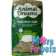 Timothy Hay