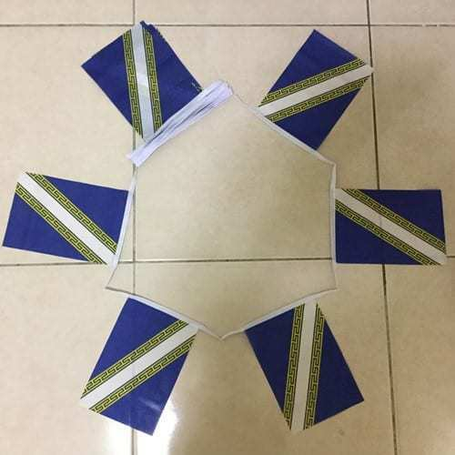 Champagne Ardenne Bunting 20 Flags 6 Metres France French Province Flag
