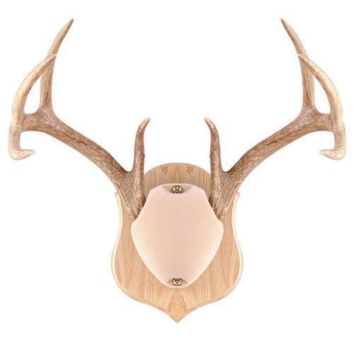 Deer Horn Mounting Kit