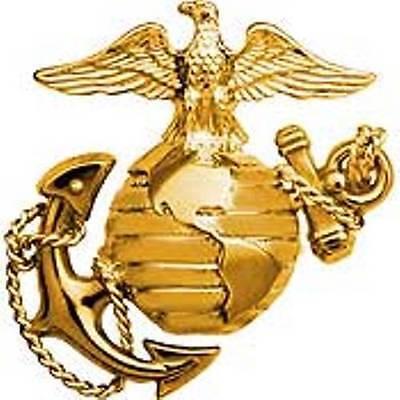 "Marine Corps B1 Left Gold Collar Global Emblem USMC Lapel / Pin 1"""