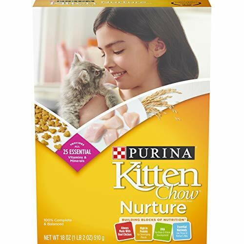 Purina Dry Chewy Kitten Cat Food, 18 oz