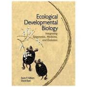 Developmental Biology Gilbert