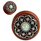 Wooden Brown 00g (10 mm) Thickness Gauge Body Piercing Jewelry