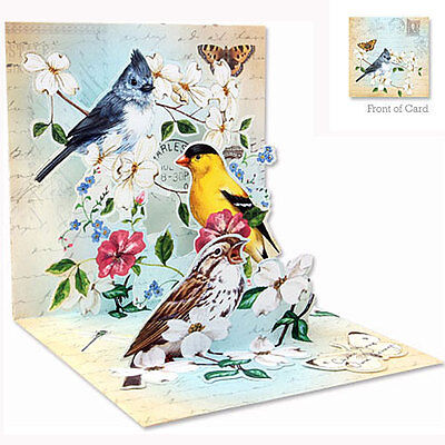 3D Pop Up Greeting Card from Up With Paper - GARDEN BIRD TRIO - UP-WP-1092