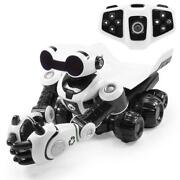 Roboter Ferngesteuert