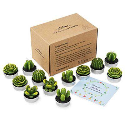 Подсвечники и аксессуары Cactus Tealight Candles