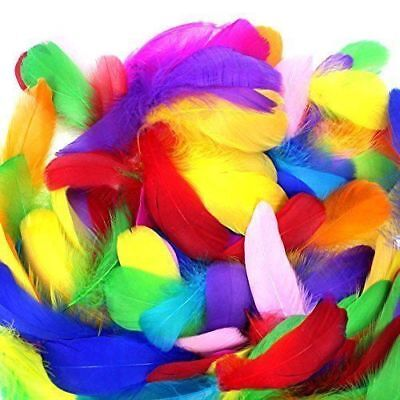 COCESA 500pcs Colorful Feathers DIY Craft Wedding Birthday Party Home Decoration](Colorful Feathers)