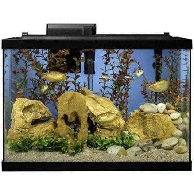 20 Gallon Aquarium Kit Set Fish Tank Led Light Hood Filter Clear Fresh Water New