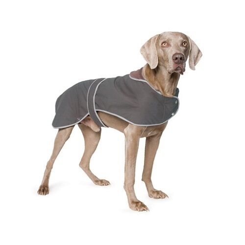 Ancol Muddy Paws Jacket Waterproof Warm Dog Coat All Weather Puppy Coats 19
