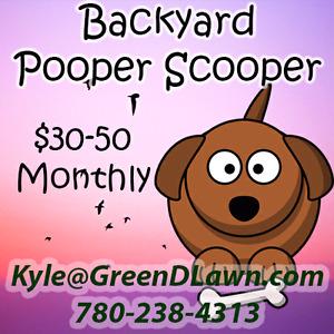 Dog Poop Cleanup - Starts at $30