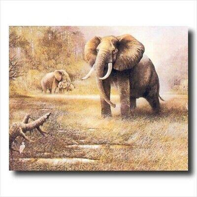 African Elephant Safari Wall Picture Art Print ()