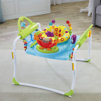 Fisher-Price First Steps Jumperoo Bouncer