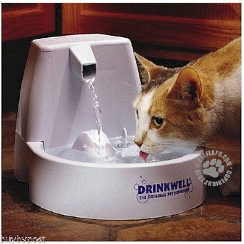 cat water fountain ebay. Black Bedroom Furniture Sets. Home Design Ideas