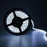 LED Strip 5050 5M Cool White