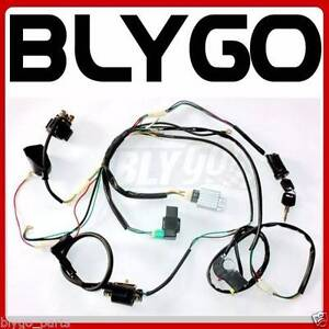 Complete Electric Start Engine Wiring Harness Loom 110 125cc Quad Braeside Kingston Area Preview