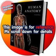 Human Anatomy Martini