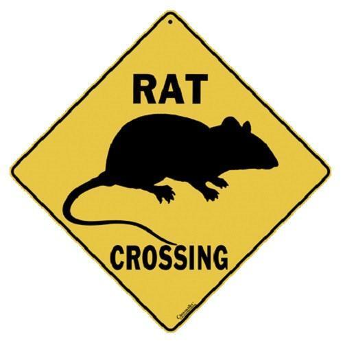 "Rat Metal Crossing Sign 16 1/2"" x 16 1/2"" (HANGING) Diamond shape Made  USA #373"