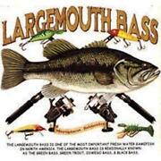 Bass Fishing Gear