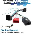 Car Audio & Video Wire Harnesses for Kia Carnival