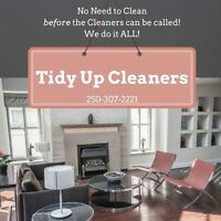 Tidy Up Cleaners Vernon