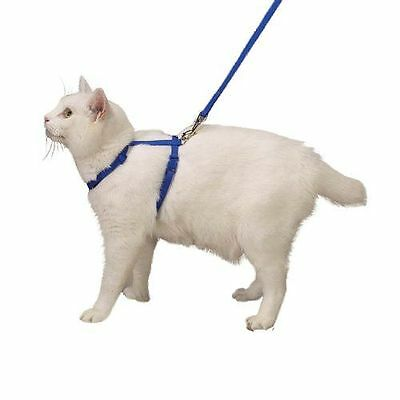 Nylon Adjustable Cat Harness Style and Safety In Blue For Walking or Grooming