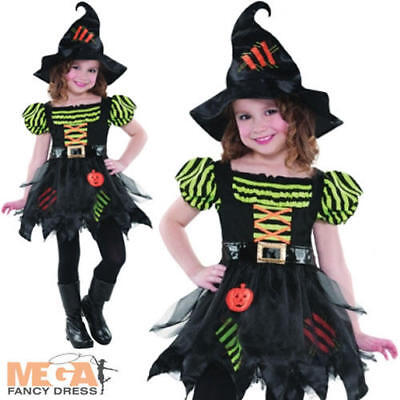 Pumpkin Patch Witch + Hat Fancy Dress Gilrs Halloween Costume Chiildrens (Pumpkin Patch Kostüm)
