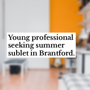 Young professional seeking summer sublet in Brantford