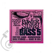 Ernie Ball 5 String Bass