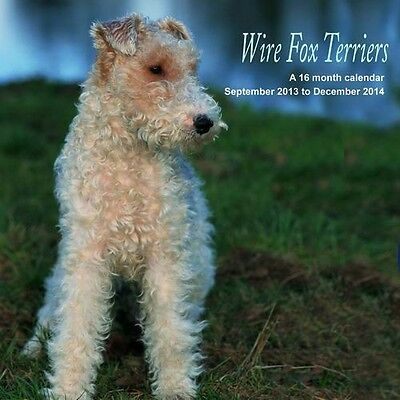WIRE FOX TERRIERS 2014 SQUARE WALL CALENDAR BRAND NEW AND SEALED BY MAGNUM