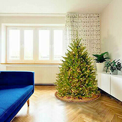 National Tree Company Pre-lit Christmas Includes Pre-strung Dunhill Fir 4 Ft