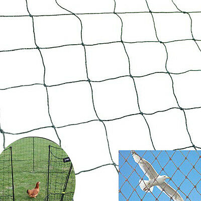 25 X 50 Bird Netting Net Netting For Bird Poultry Avaiary Game Pens 2x2 469