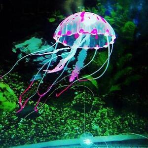Jellyfish Fish Amp Aquarium Ebay