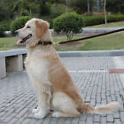 Unbranded Leather Dog Tracking Leashes