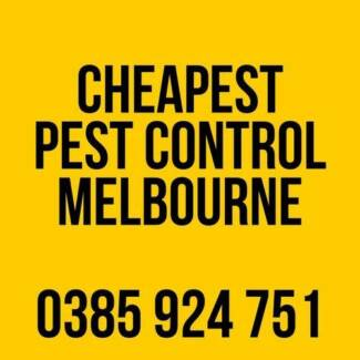 Affordable Pest Control In Melbourne