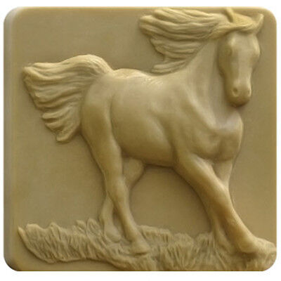 Running Horse Clear PVC Mold