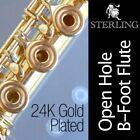 Open Hole Concert Flute Silver Body Flutes