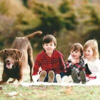 Nanny Wanted - Seeking Energetic Full Time Nanny For 3 Busy Chil